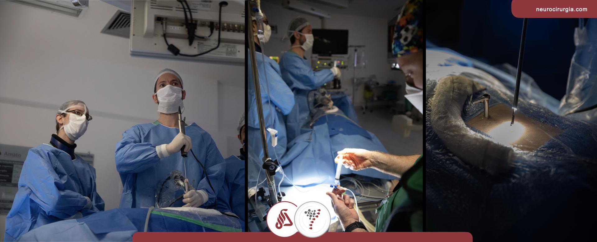 Cirurgia Endoscópica da Coluna